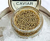Special Reserve Russian Osetra Caviar